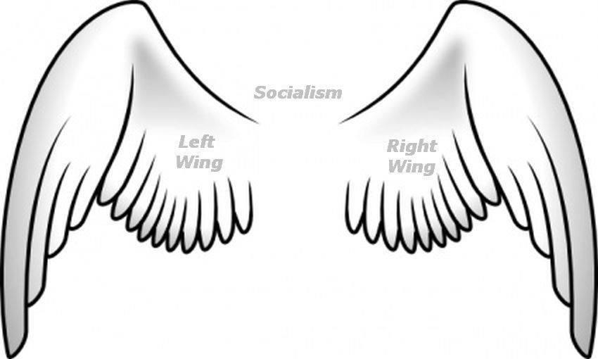 The Socialist Bird